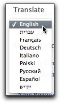 Translate Screenshot